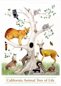Tree of life animals and plants
