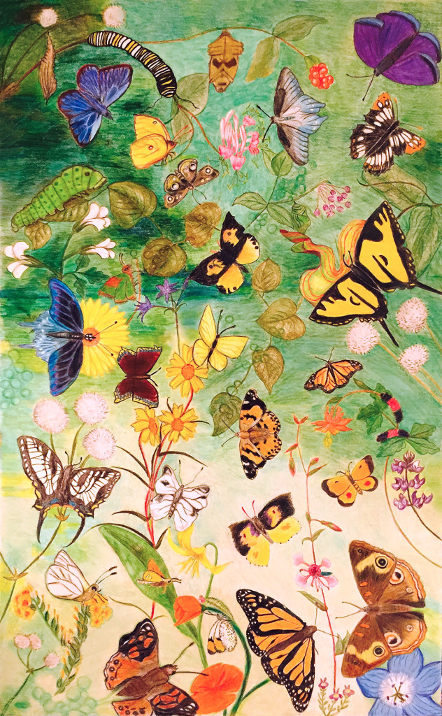 Butterfly Poster Final